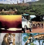 Sun City and Pilansberg game reserve